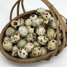 Ultimate Health Benefits of Eating Quail Eggs