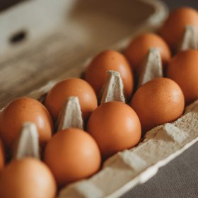 Eggs Smell Like Fish | What's The Cause & What You Can Do To Fix It